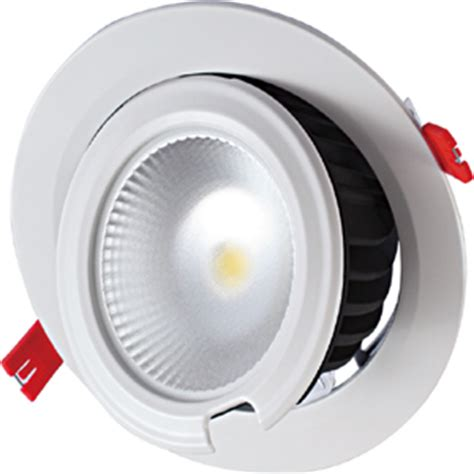 Lu Downlight Plc 50w 60w bridgelux cob samsung 5630smd led trunk light