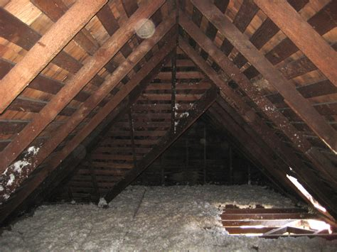 attic pictures noe valley to the studs