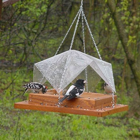 Bird Feeder Covers tray with clear cover bird feeder yard envy