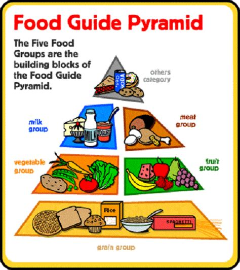 diagram of the food pyramid health printable food pyramid