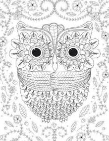 free owl coloring pages for adults big eyed owl coloring page favecrafts