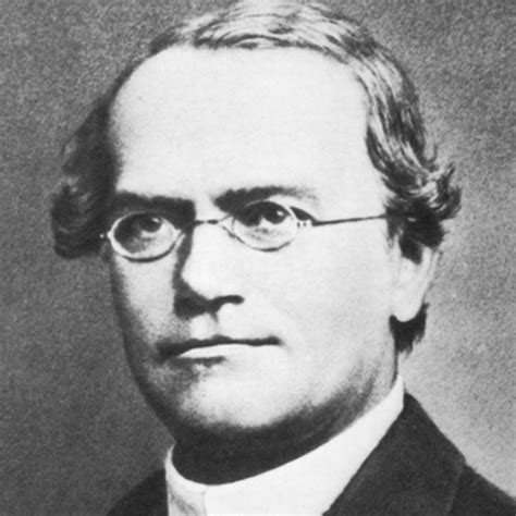 Biography Gregor Mendel | gregor mendel botanist scientist biography com