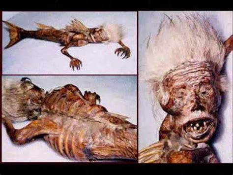 imagenes chidas raras animales raros he imagenes raras 161 161 161 161 161 falsas youtube