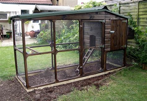 6 considerations before u start a chicken coop the