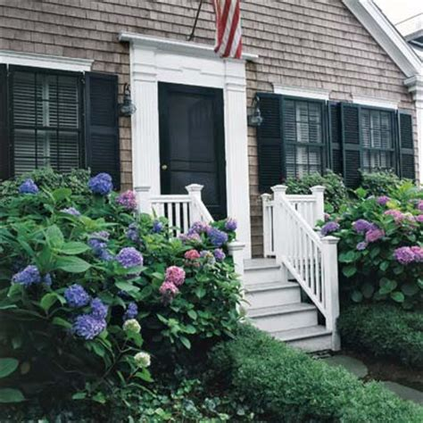 plants for side of house best plants for west side of house 28 images best foundation plantings landscaping