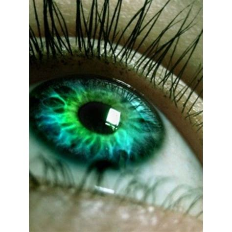 whats your hidden eye color quiz quotev 1000 ideas about rare eye colors on pinterest eye color