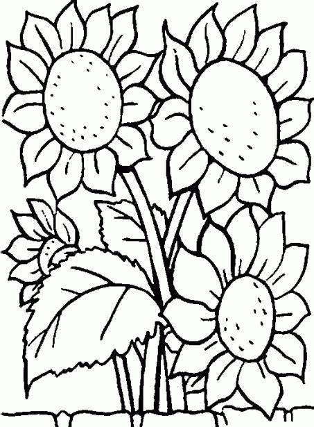 imagenes en blanco para colorear de flores dibujos de flores hermosas para descargar imprimir y