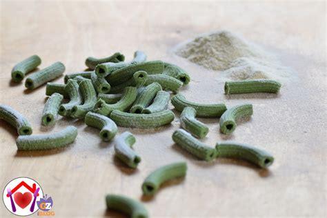 fatti in casa italiani rigatoni verdi fatti in casa ricetta ed ingredienti dei