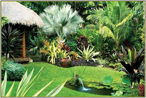 backyard tropical ideas tropical plants garden in the small backyard with natural