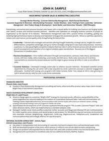 Director Resume Sles by Executive Managing Director Resume