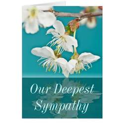 our deepest sympathy card zazzle