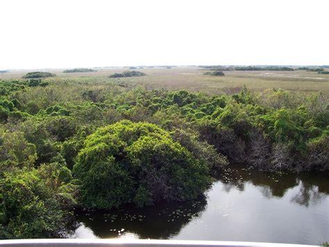 everglades boats wikipedia parco nazionale delle everglades wikipedia