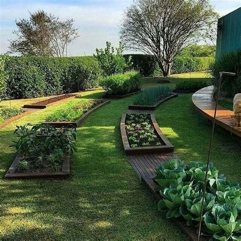 amazing vegetable gardens 272 best images about veggie garden on pinterest gardens