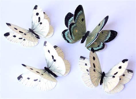 How To Make Paper Butterfly Wings - make some paper butterfly embellishments the graphics