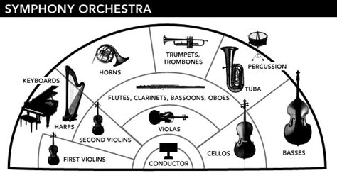 how many sections does a symphonic orchestra have horns harps and hubcaps the classical orchestra needs