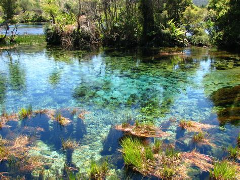 Other Nature clear water other wonders to
