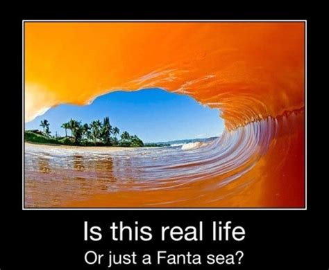 Fanta Sea Meme - is this real life or just a fanta sea jpegy what the