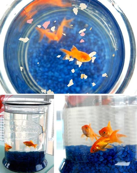 feng shui fish tank in bedroom feng shui fish tank in bedroom digitalstudiosweb com