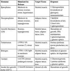Endocrine organs list fsh follicle stimulating hormone lh