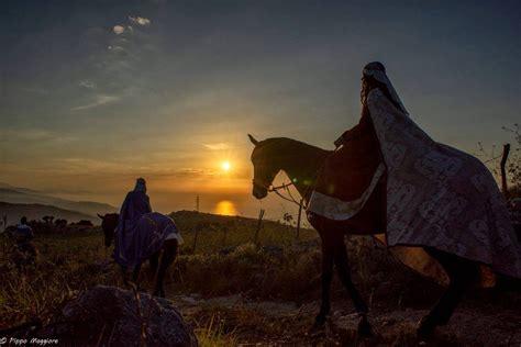 delfio vasi cavallo sanfratellano