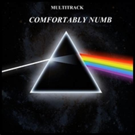 pink floyd comfortably numb album pink floyd comfortably numb multitrack jam session