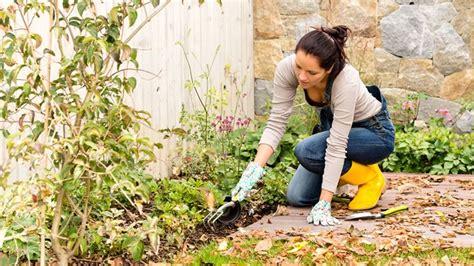 come preparare un giardino come preparare un giardino invernale crea giardino