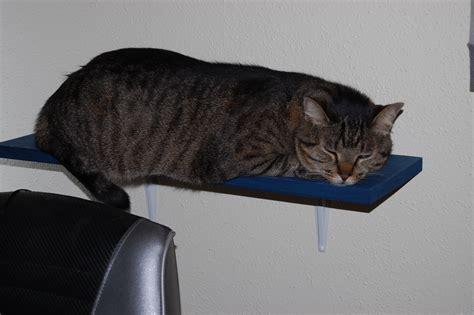 cat shelves diy sensiblysara