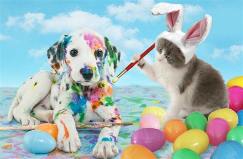 easter puppy easter pet safety archives bank veterinary hospital