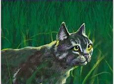 Graystripe - Warrior Cat Wiki Leafpool And Crowfeather Mating