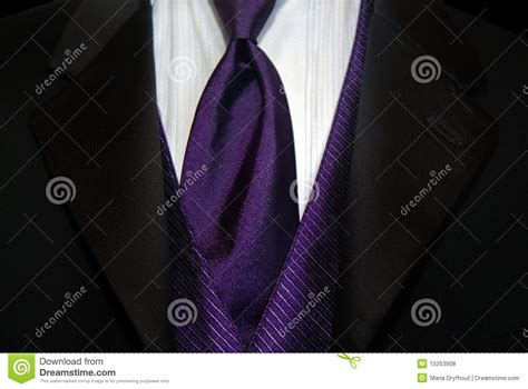purple tie royalty free stock photos image 15253908