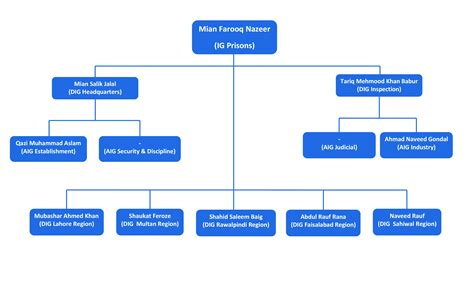 staff organogram template organogram chart related keywords organogram chart