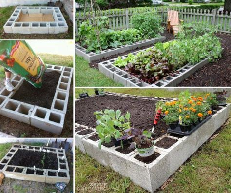 amazing vegetable gardens see how you can grow amazing vegetables in raised garden