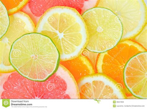 Kitchen Design Contest Sliced Citrus Fruits Stock Photo Image 39247829