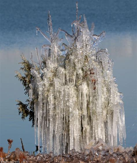 beautiful china photos show trees frozen into place by