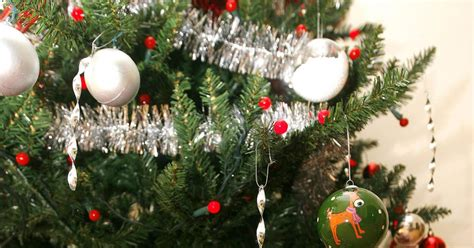 birmingham christmas tree recycling scheme expanded