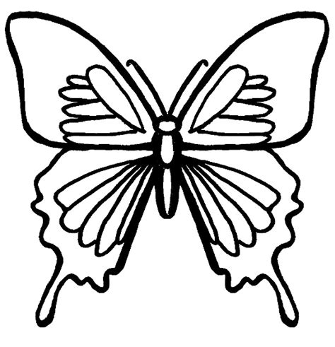 black and white coloring pages of butterflies bug museum bug coloring pages butterfly 1