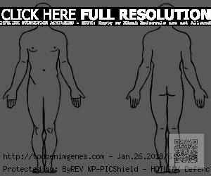 descargar e imprimir dibujos del cuerpo humano para colorear y pintar im 225 genes de el cuerpo humano para dibujar descargar