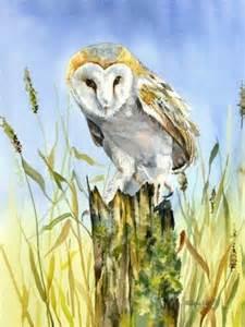 Owl Ls For Sale wise owl world wilsden watercolours