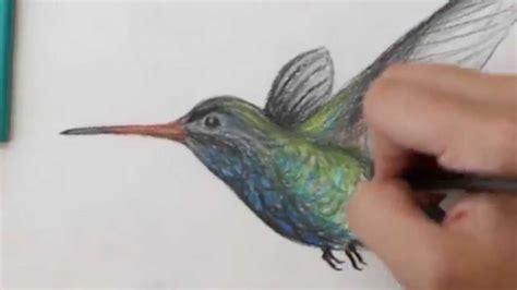 colors of hummingbirds colored pencil drawing of a hummingbird