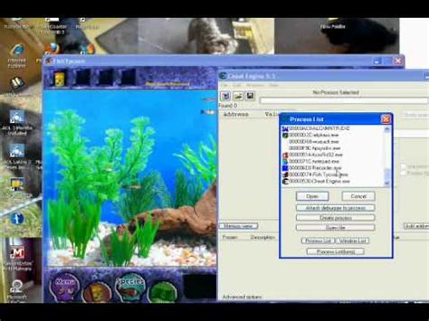 google chrome free download full version brothersoft free fish tycoon money full version only youtube