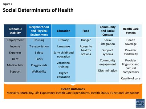 high resolution nursing home care plans 6 social work beyond health care the role of social determinants in