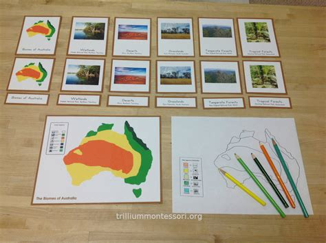 printable montessori work learning about australia trillium montessori