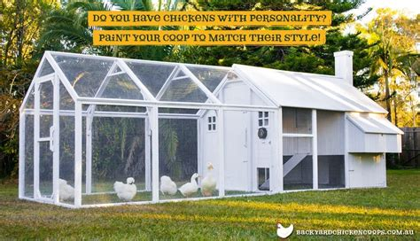 backyard chicken coops brisbane the best 28 images of backyard chicken coops brisbane