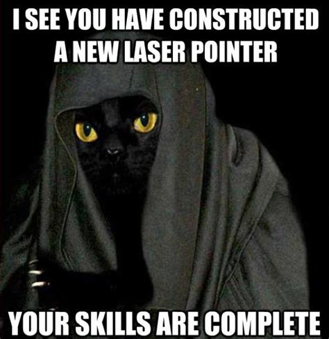 Laser Pointer Meme - may the fourth star wars special 2