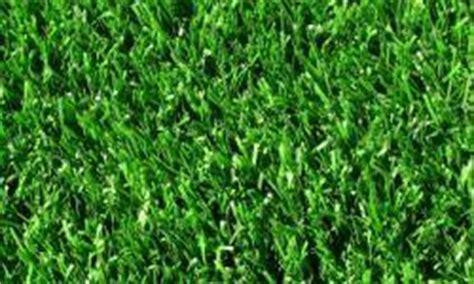 tappeti per cer co calcio in erba sintetica a cerlongo di goito mantova