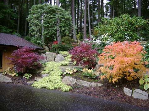 Pacific Northwest Garden Ideas 824 Best Landscaping A Slope Images On Pinterest Landscaping Ideas Backyard Ideas And Garden