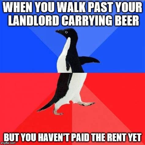 Penguin Memes - awesome penguin meme www pixshark com images galleries