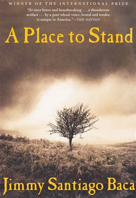 A Place Picture Book A Place To Stand S Release A Place To Stand