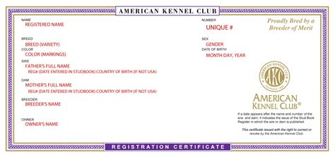 how to akc register a puppy what do papers look like for the of purebred dogs