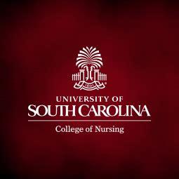 Executive Mba Of South Carolina by Executive Advisory Council College Of Nursing